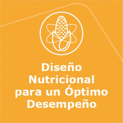 3. Diseño Nutricional