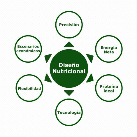 4. Diseño Nutricional_Gráfico